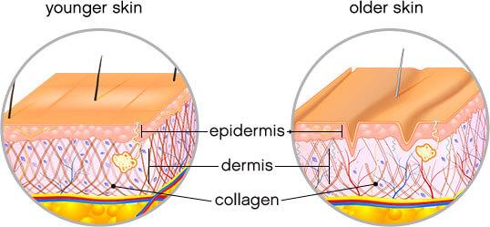 Đắp Mask Collagen Có Thật Sự Tốt? 4